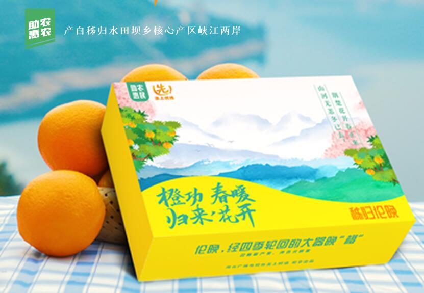 """""""橙功""""归来 春暖花开 立下家规服务居民"""